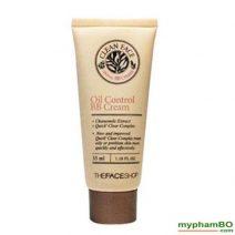 Kem BB danh cho da nhon – Oil free bb cream (1)