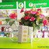 Tinh chat dac tri tham nam White Seed Pure Vitamin 10% Ampoule (2)