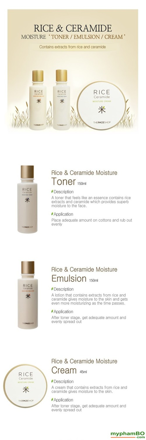 Bo duong da gao Rice Ceramide Moisture Line The face shop 3in1 (2)