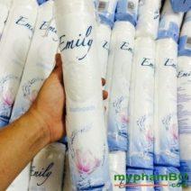 Bong tay trang Emily - Duc (2)