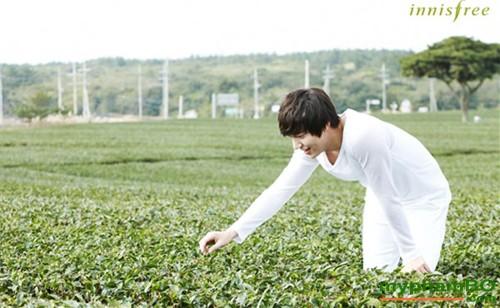 Nuoc hoa hong tra xanh green tea fresh skin (1)
