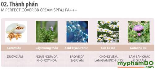 Kem BB Missha M Perfect Cover BB Cream SPF42PA++ 50ml (7)