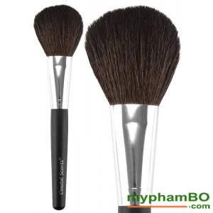 3 Co phu phan (Powder Brush)