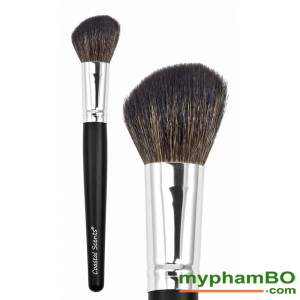 4,Co ma hong (Blush Brush)