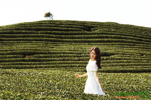 Bo duong da Innisfree tra xanh green tea fresh (3)