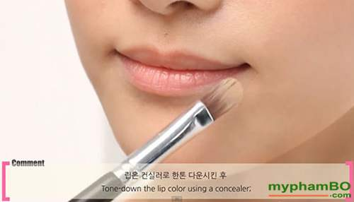 Choi moi One touch Lip brush The Face Shop (1)