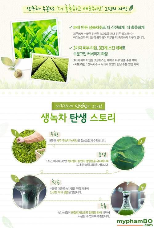 Nuoc hoa hong tra xanh Green Tea Balancing Skin Innisfree (2)