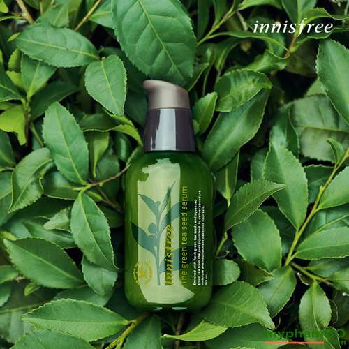 Tinh chat duong innisfree the green tea seed serum (1)