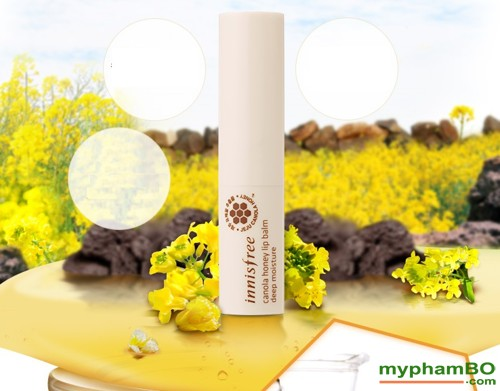 son-duong-moi-innisfree-canola-honey-lip-balm-2