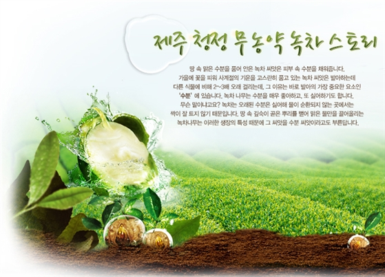 Green-tea-sleeping-pack-Mat-na-ngu-tra-xanh-Innisfree-3