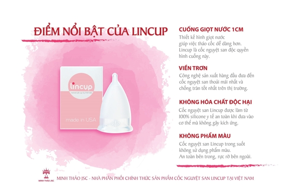 Coc nguyet san Lincup cua My (5)