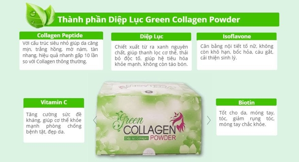 Diep luc Collagen (Green Collagen Powder) - dep da, chong lao hoa, can bang noi tiet (10)